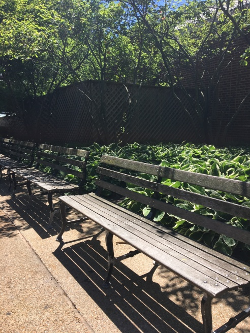 zoo bench one
